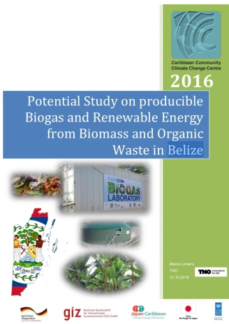 potential_study_on_producible_biogas_and_renewable_energy_from_biomass_and_organic_waste_in_belize